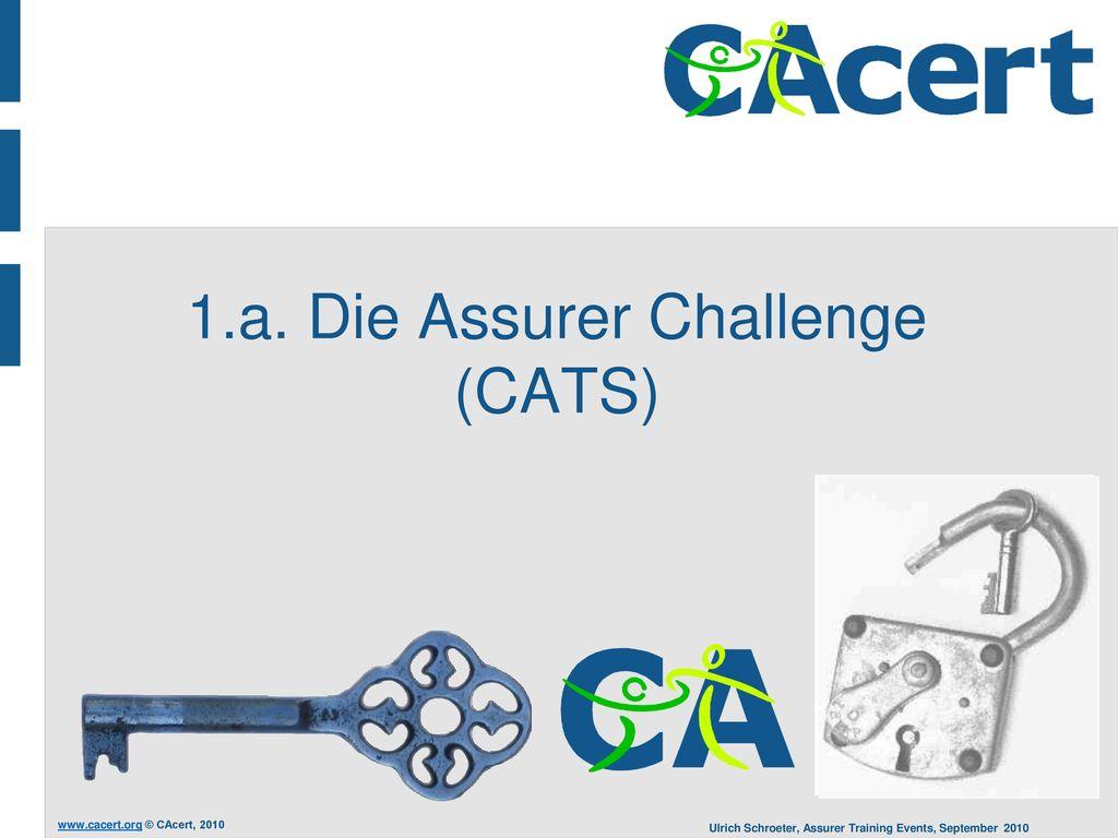 1.a. Die Assurer Challenge (CATS)