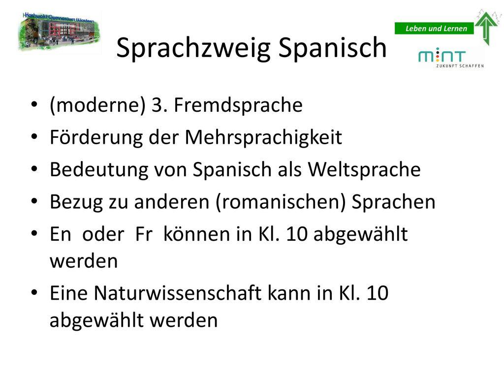 Sprachzweig Spanisch (moderne) 3. Fremdsprache