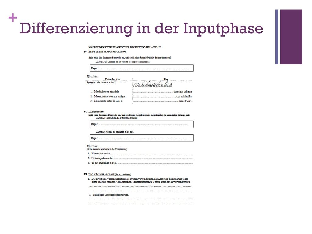 Differenzierung in der Inputphase