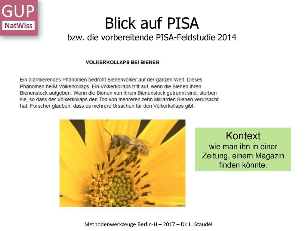 Blick auf PISA bzw. die vorbereitende PISA-Feldstudie 2014