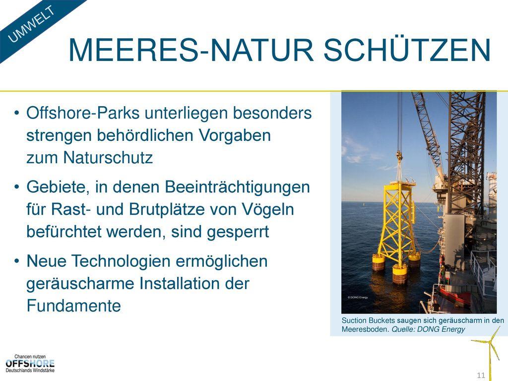 Meeres-Natur schützen