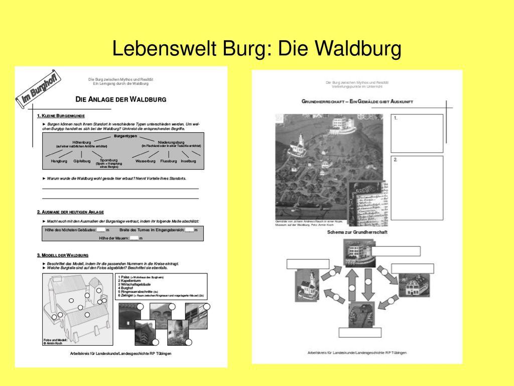 Lebenswelt Burg: Die Waldburg