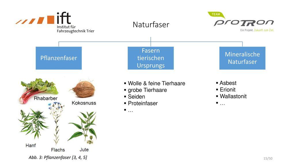 Naturfaser Naturfaser Fasern tierischen Ursprungs