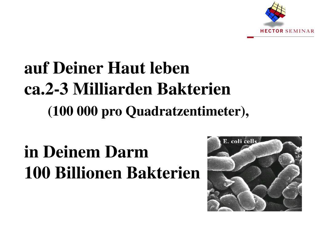 (100 000 pro Quadratzentimeter),