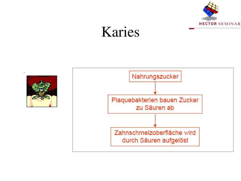 Tab. 1: Gesellschaftliche Nutzung mikrobieller Aktivitäten (Auswahl).