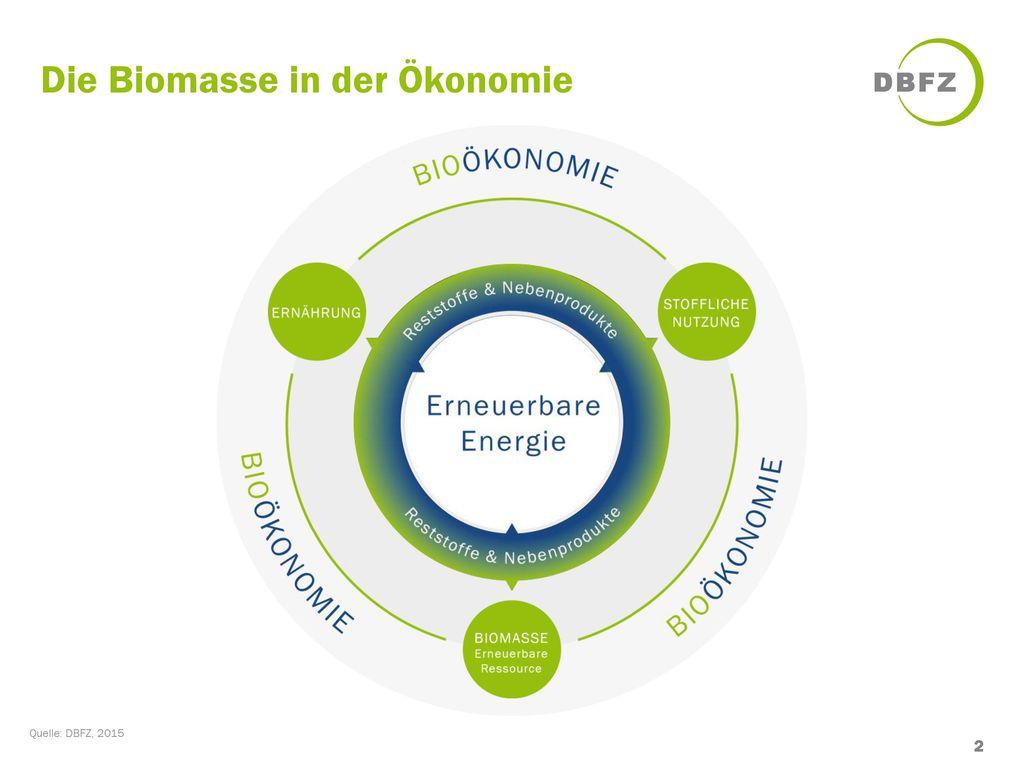 Die Biomasse in der Ökonomie