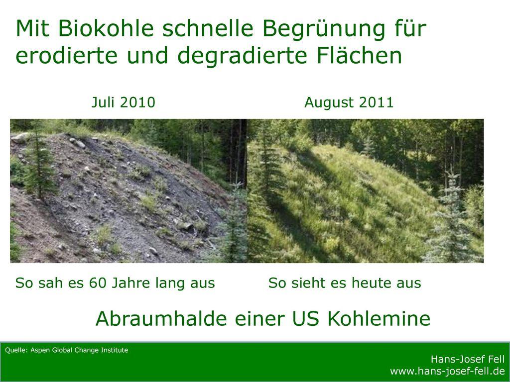 Mit Biokohle schnelle Begrünung für erodierte und degradierte Flächen