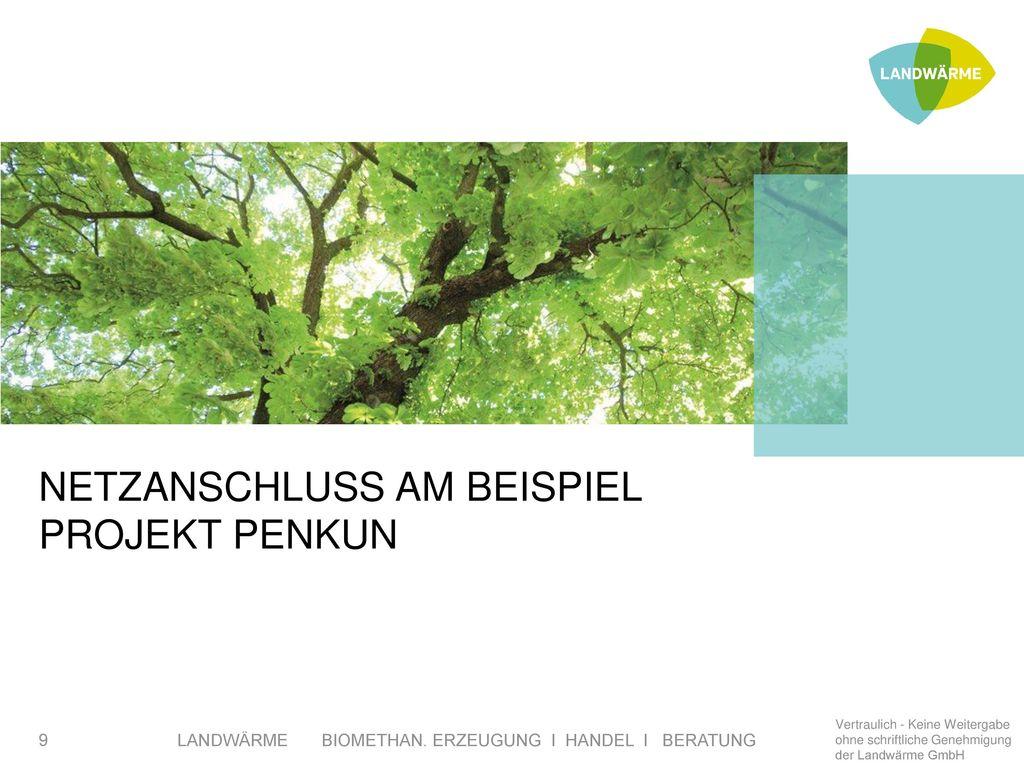 NETZANSCHLUSS AM Beispiel Projekt Penkun