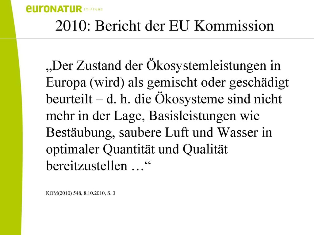 2010: Bericht der EU Kommission