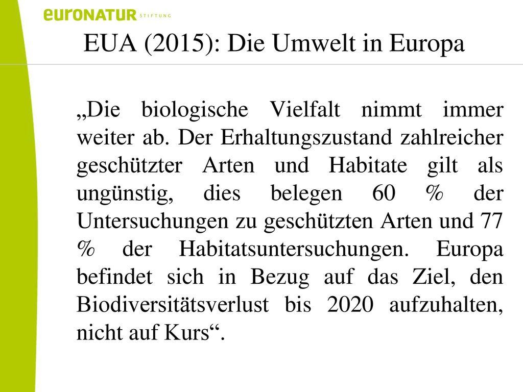 EUA (2015): Die Umwelt in Europa