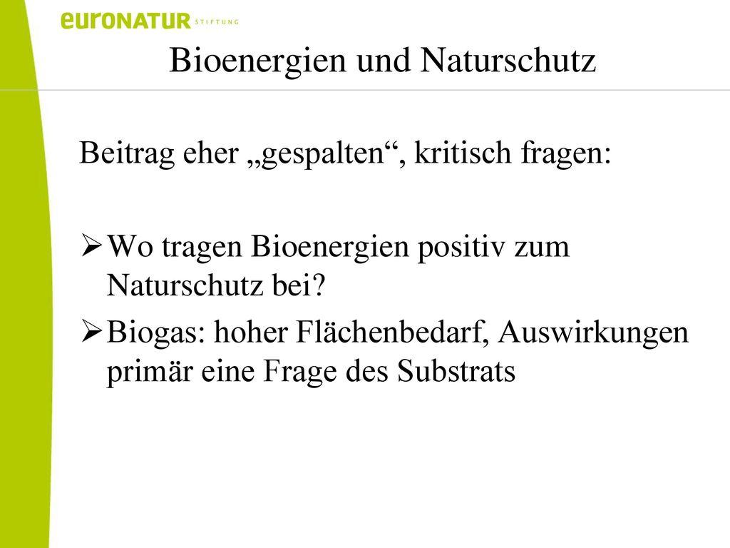 Bioenergien und Naturschutz