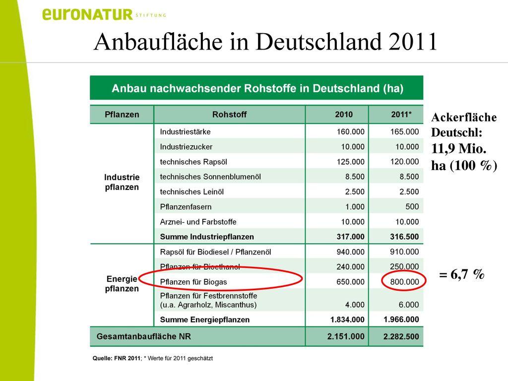 Anbaufläche in Deutschland 2011