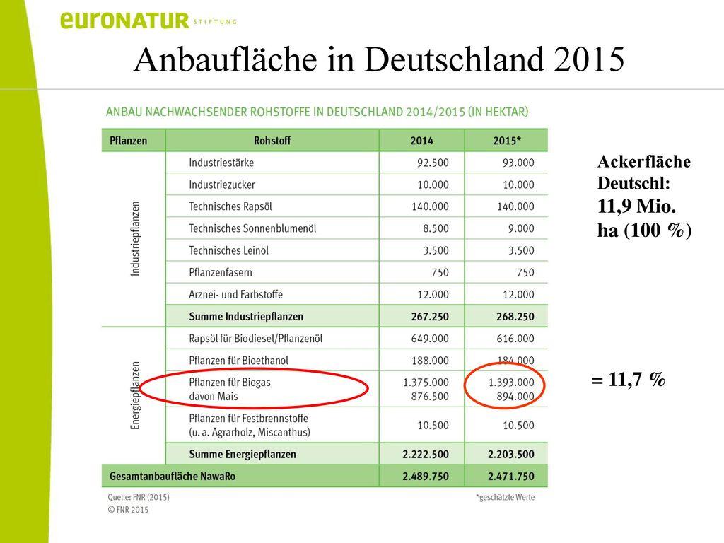 Anbaufläche in Deutschland 2015