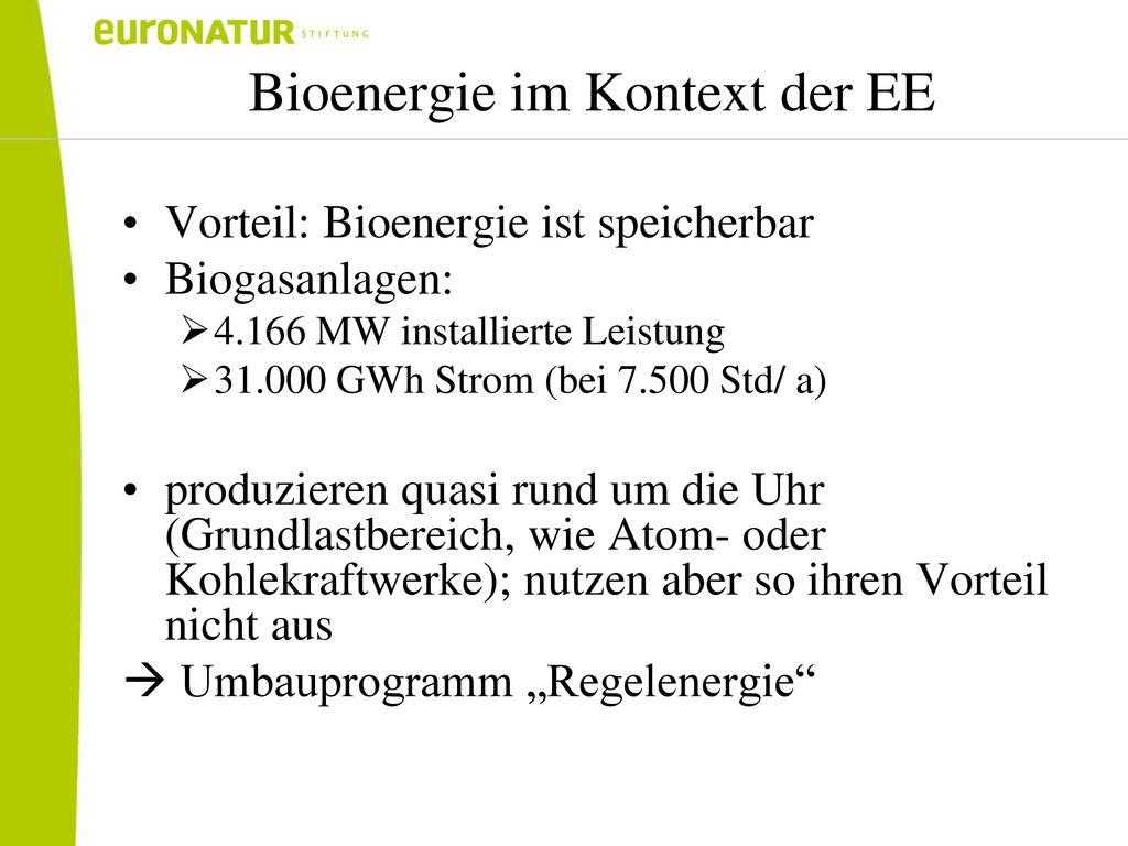 Bioenergie im Kontext der EE
