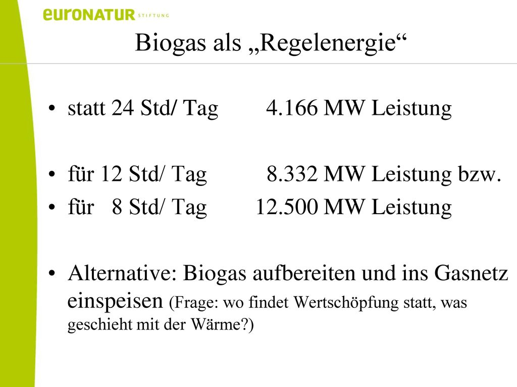 "Biogas als ""Regelenergie"