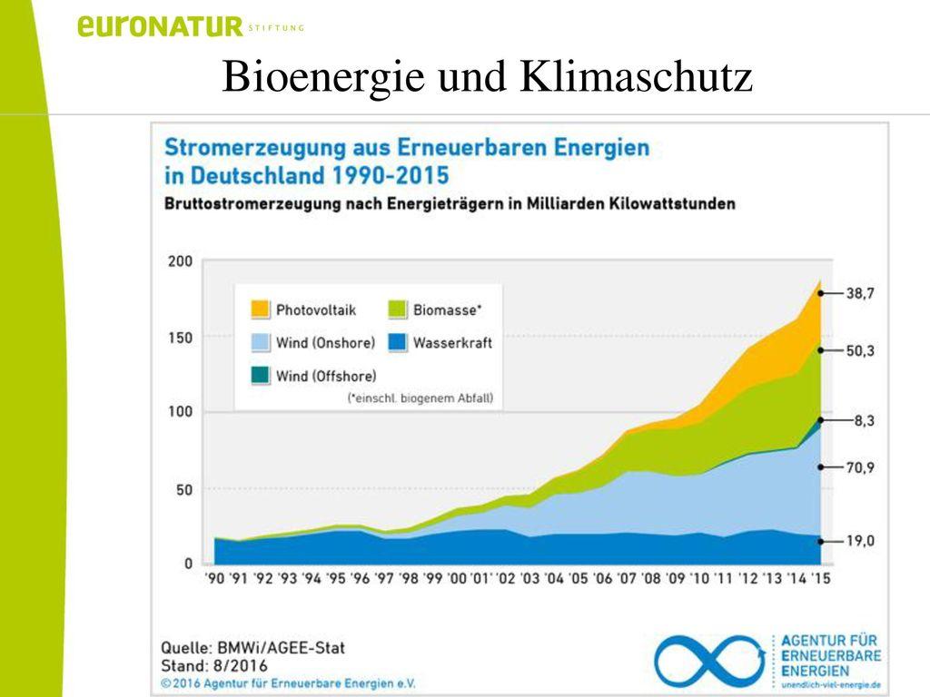 Bioenergie und Klimaschutz