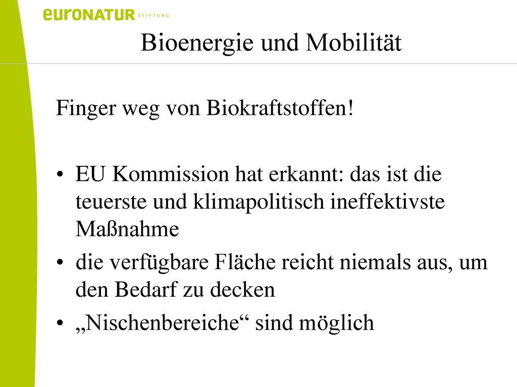 Bioenergie und Mobilität
