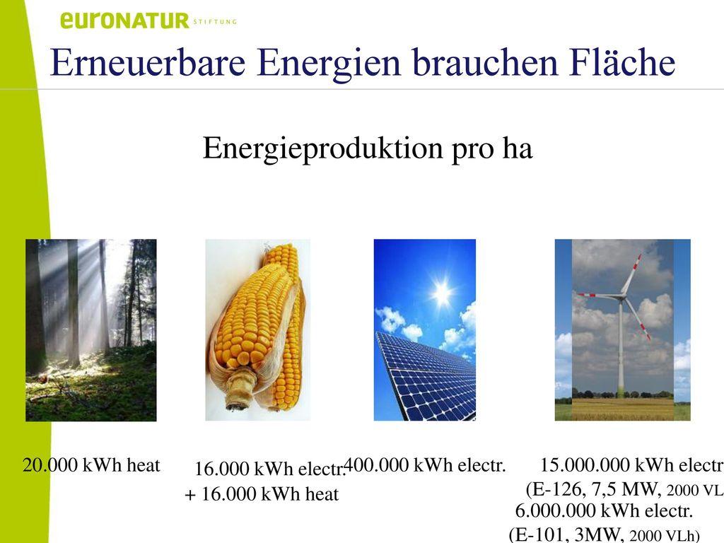 Erneuerbare Energien brauchen Fläche