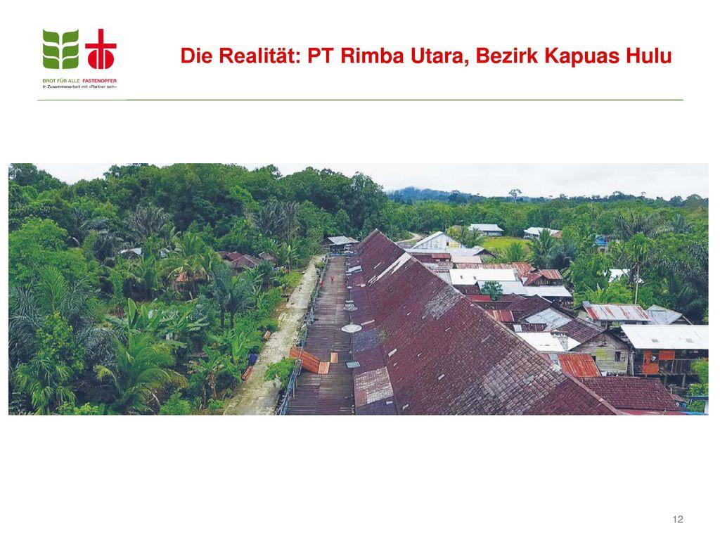 Die Realität: PT Rimba Utara, Bezirk Kapuas Hulu
