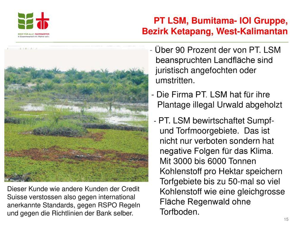 PT LSM, Bumitama- IOI Gruppe, Bezirk Ketapang, West-Kalimantan