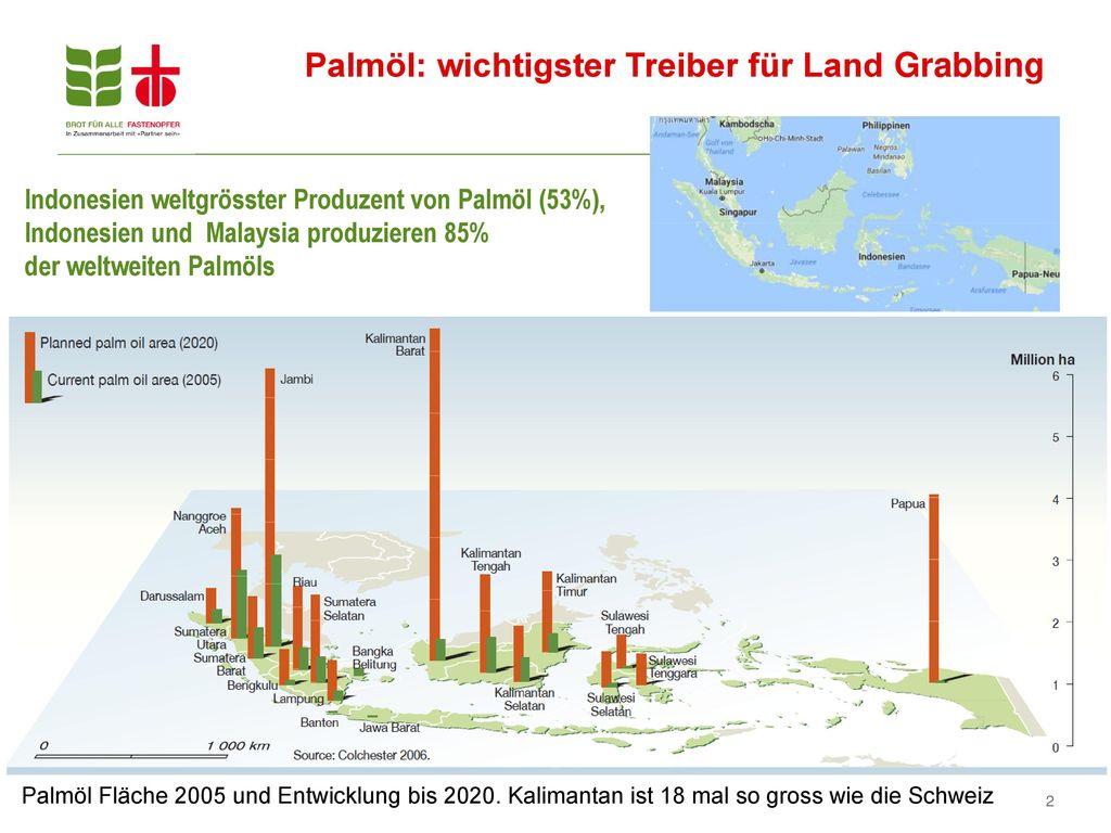 Palmöl: wichtigster Treiber für Land Grabbing