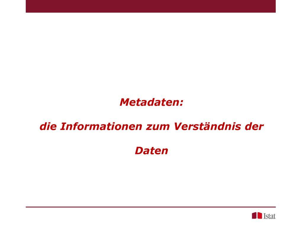 Metadaten: die Informationen zum Verständnis der Daten