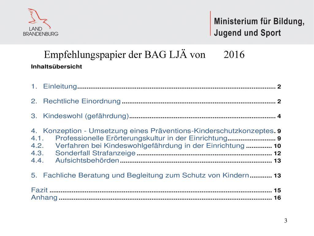 Empfehlungspapier der BAG LJÄ von 2016