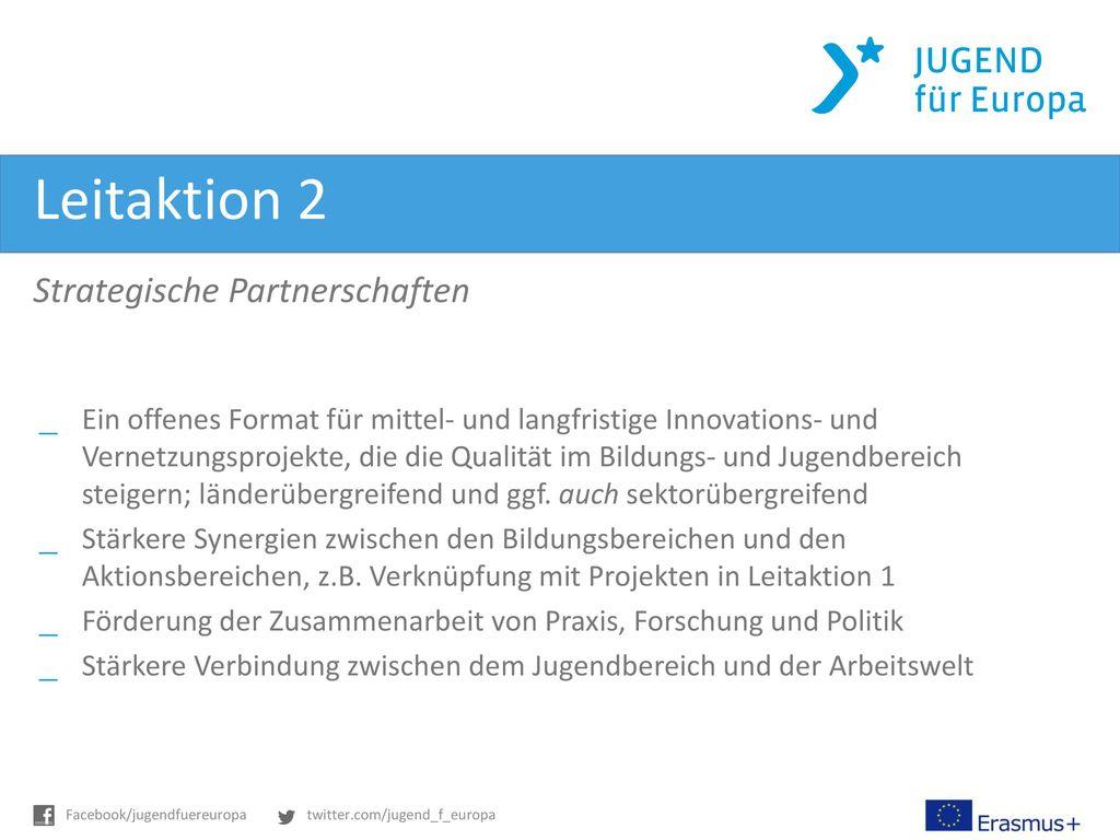 Leitaktion 2 Strategische Partnerschaften