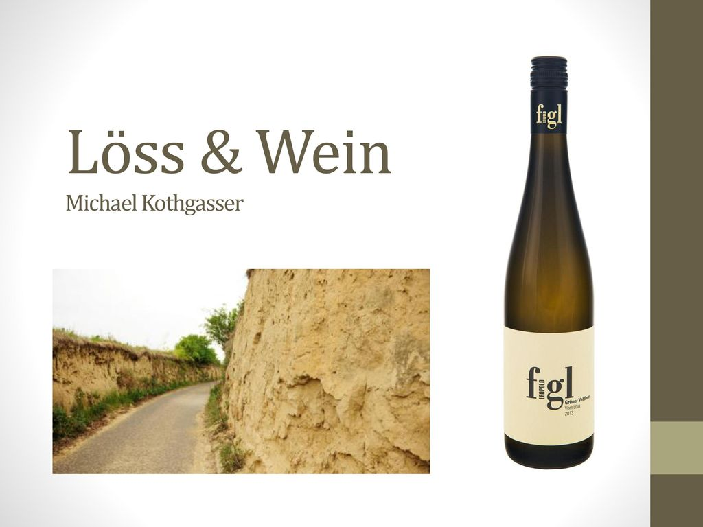 Löss & Wein Michael Kothgasser