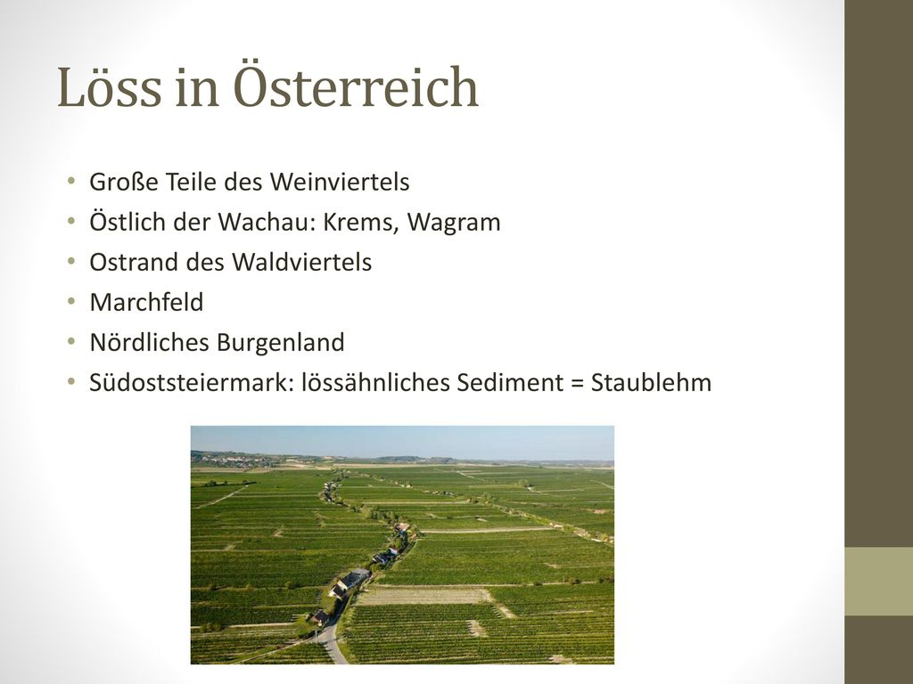 Löss in Österreich Große Teile des Weinviertels