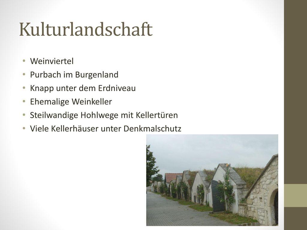 Kulturlandschaft Weinviertel Purbach im Burgenland