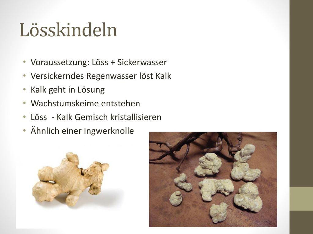 Lösskindeln Voraussetzung: Löss + Sickerwasser