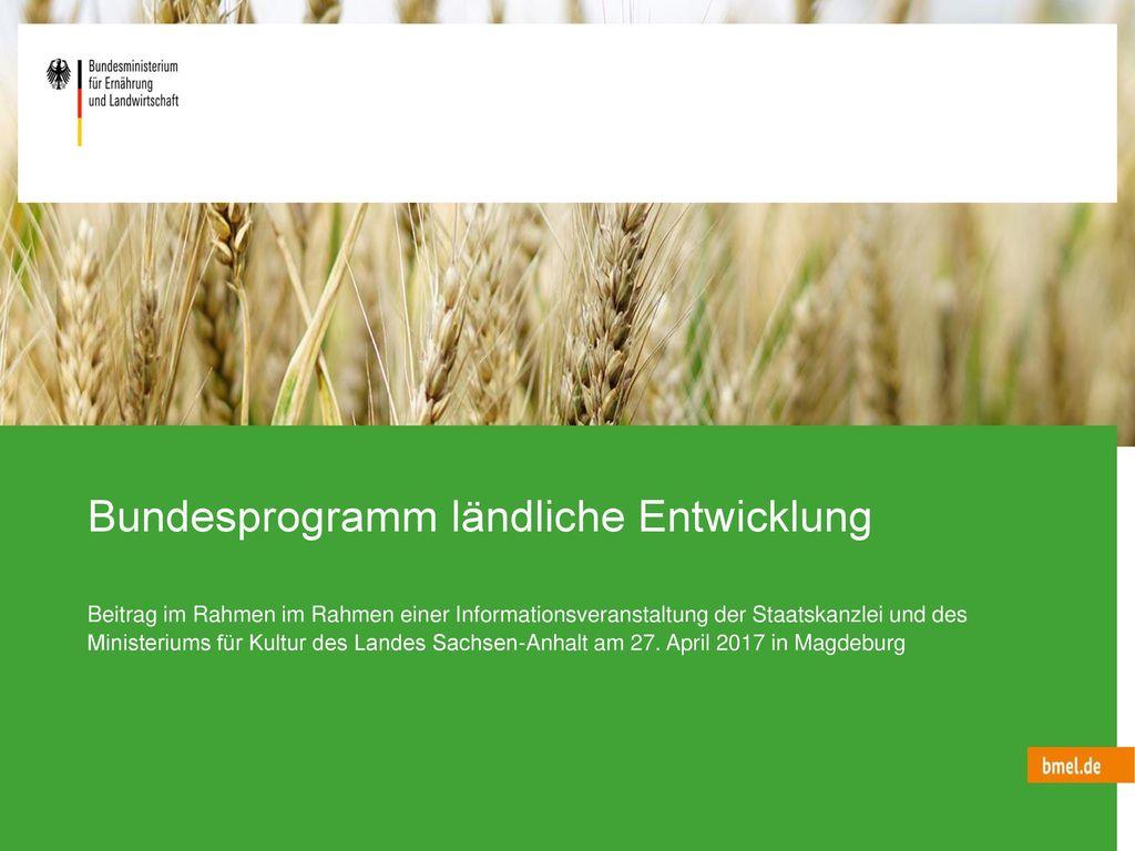 Bundesprogramm ländliche Entwicklung