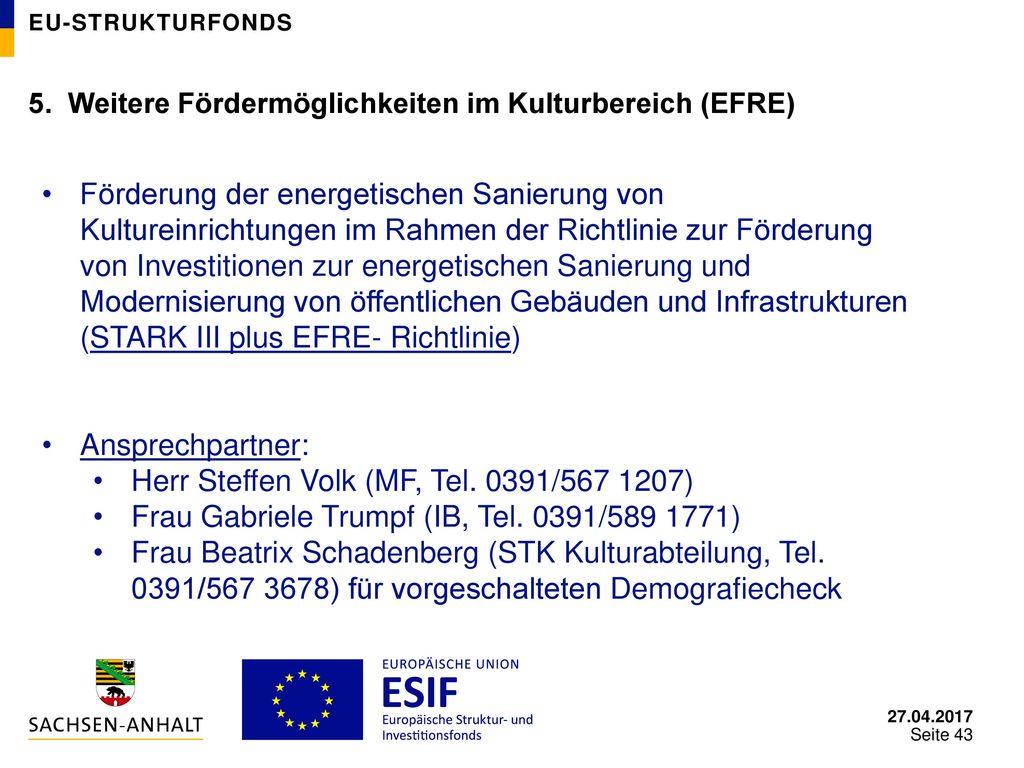 Herr Steffen Volk (MF, Tel. 0391/567 1207)