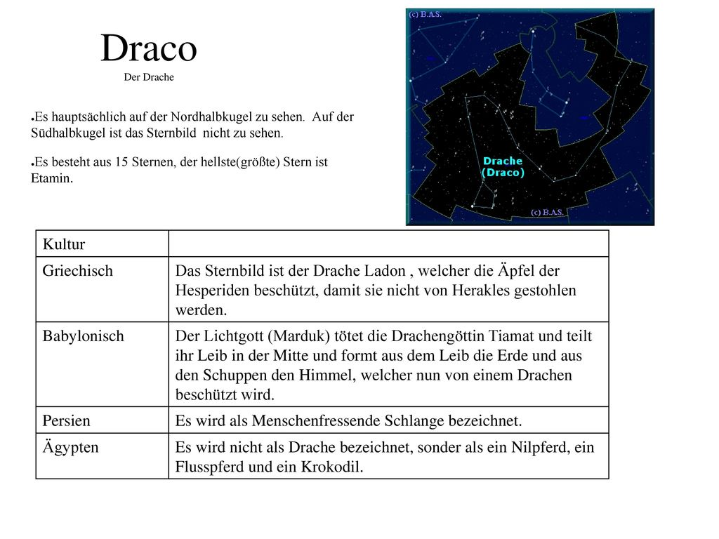 Draco Der Drache Kultur Griechisch