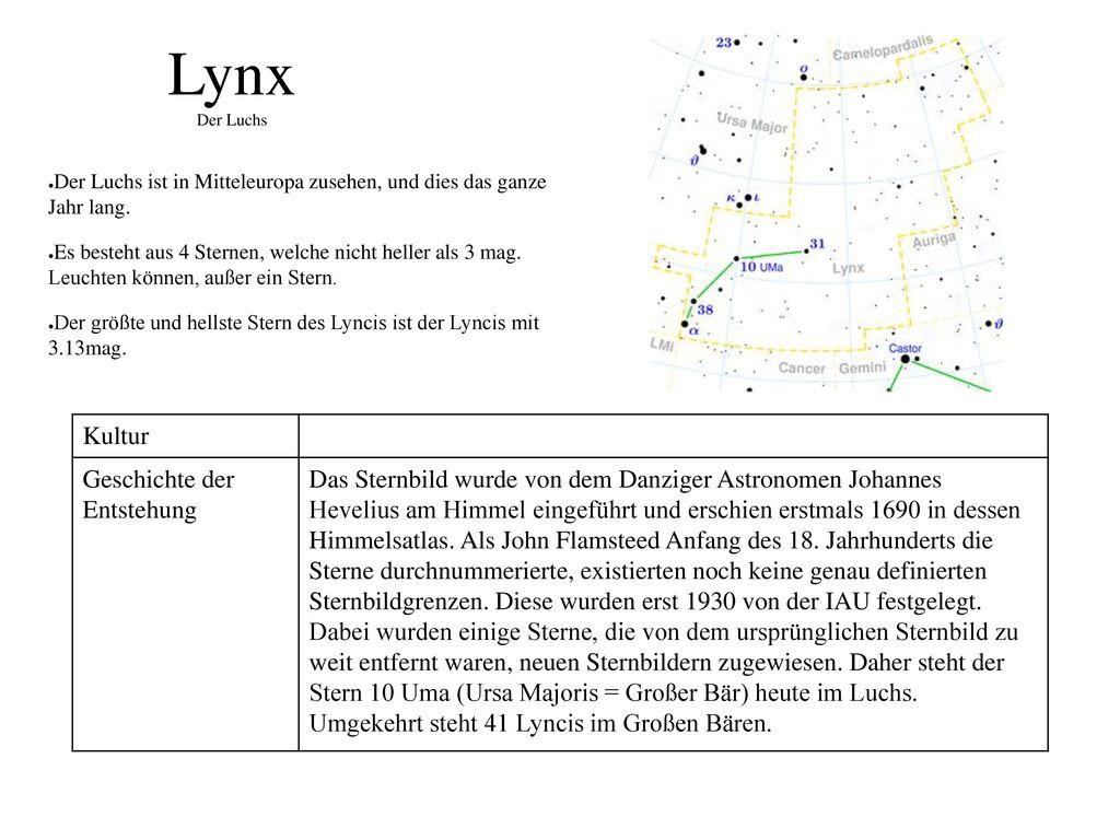 Lynx Der Luchs Kultur Geschichte der Entstehung