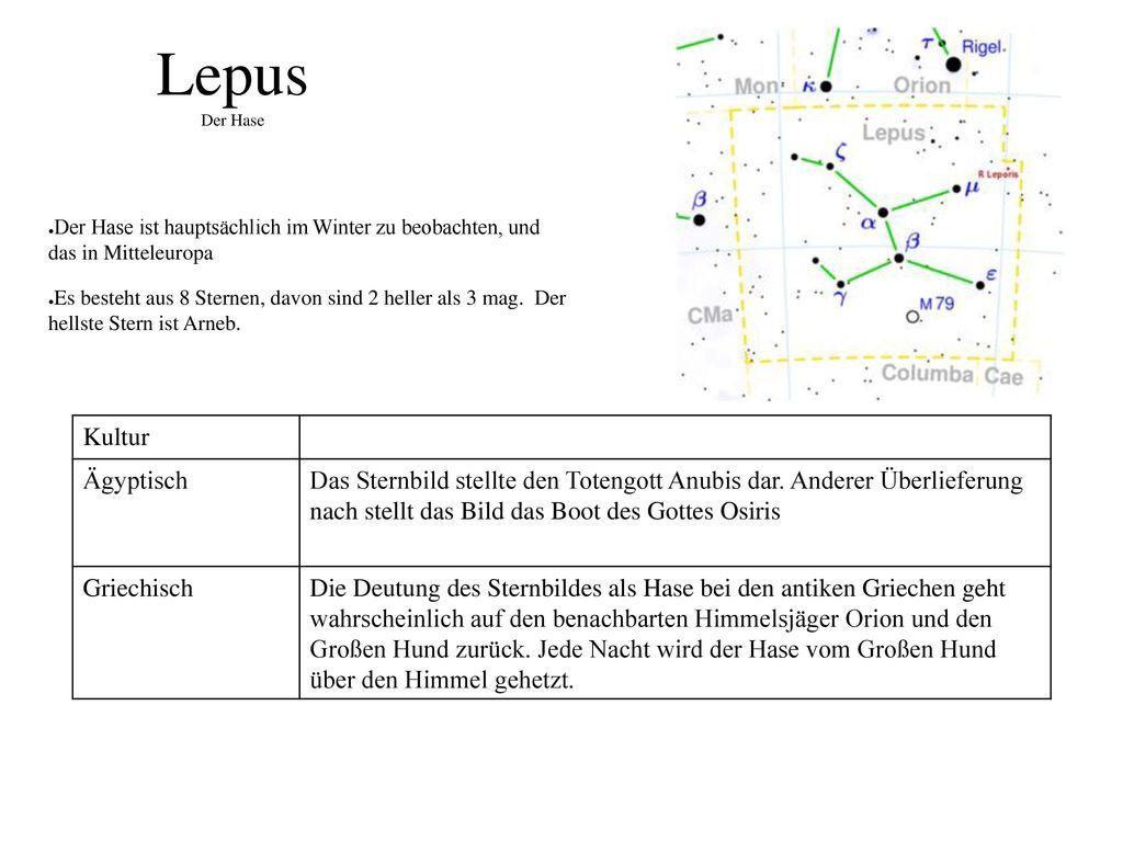 Lepus Der Hase Kultur Ägyptisch