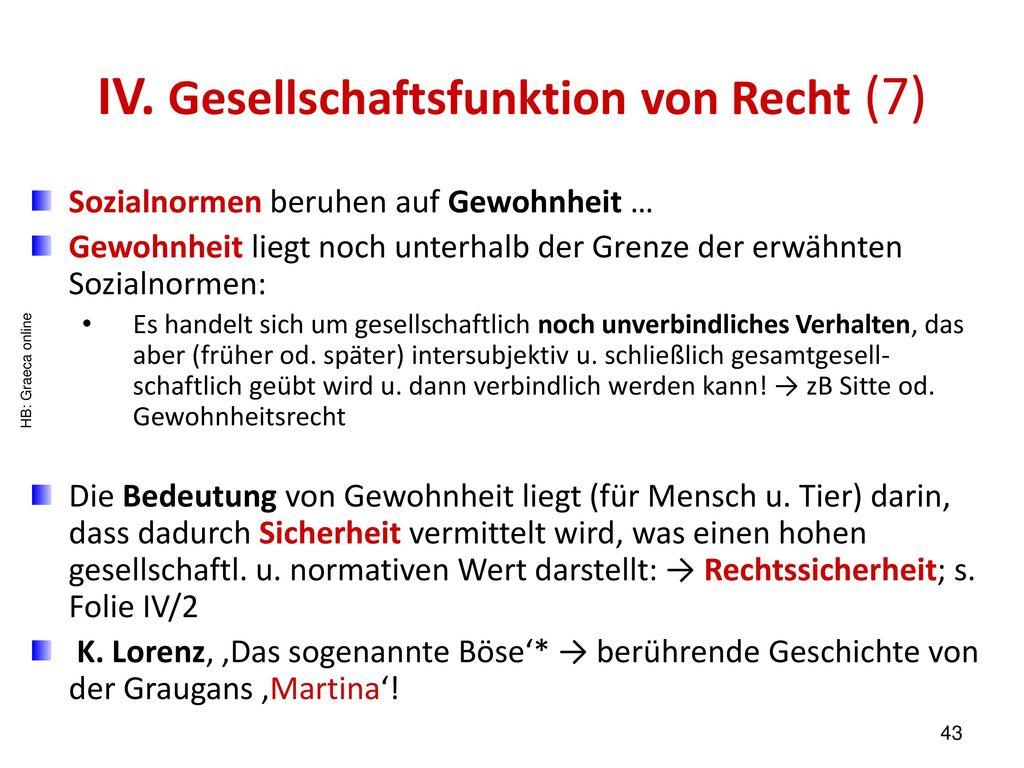 IV. Gesellschaftsfunktion von Recht (7)