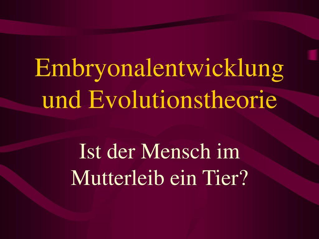 Embryonalentwicklung und Evolutionstheorie