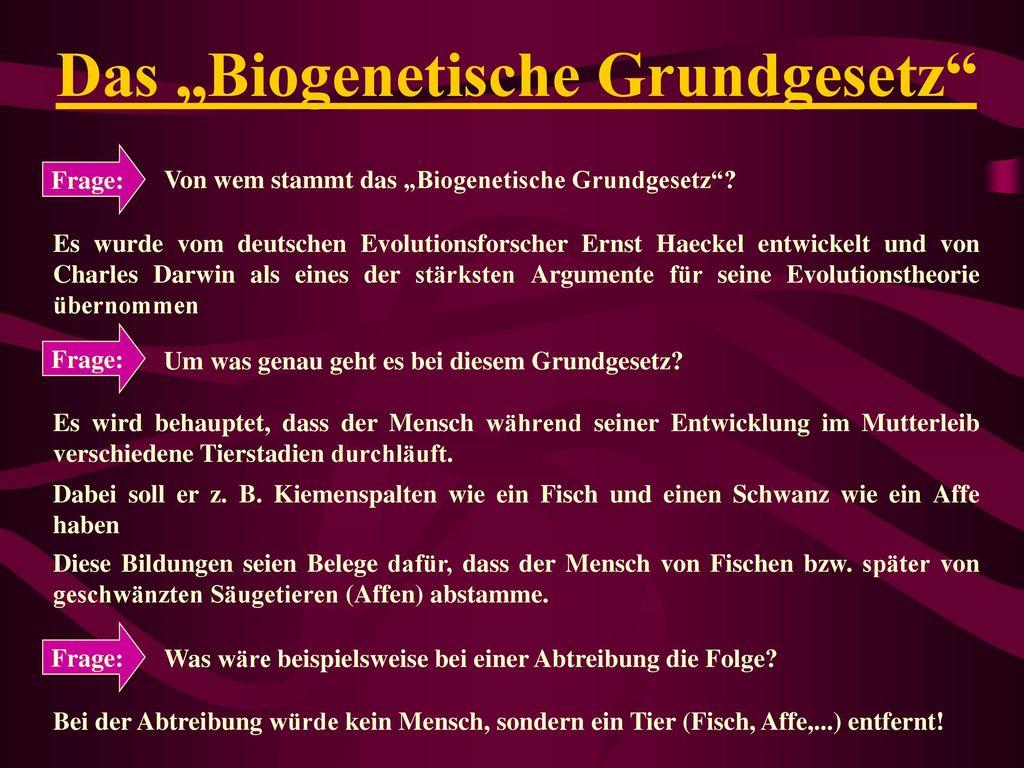 """Das """"Biogenetische Grundgesetz"""