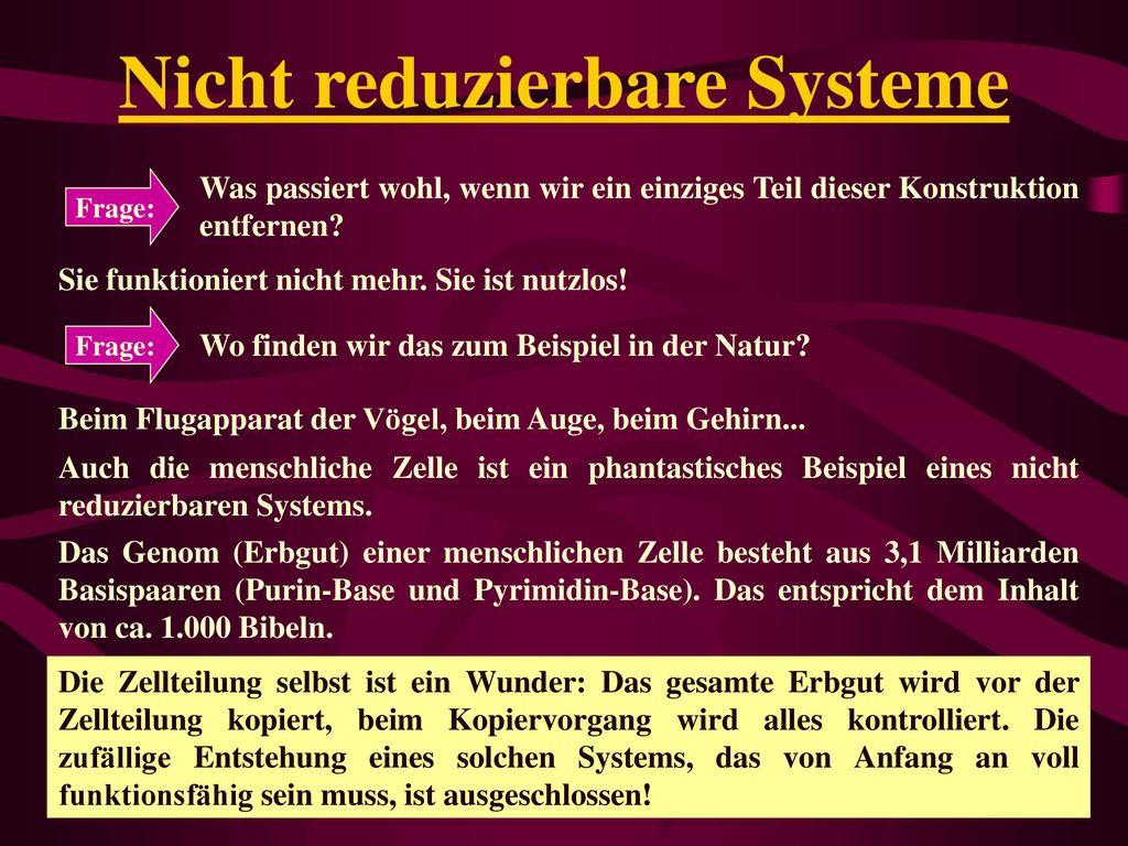 Nicht reduzierbare Systeme