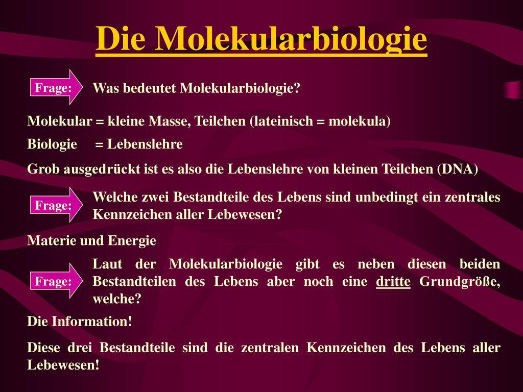 Die Molekularbiologie
