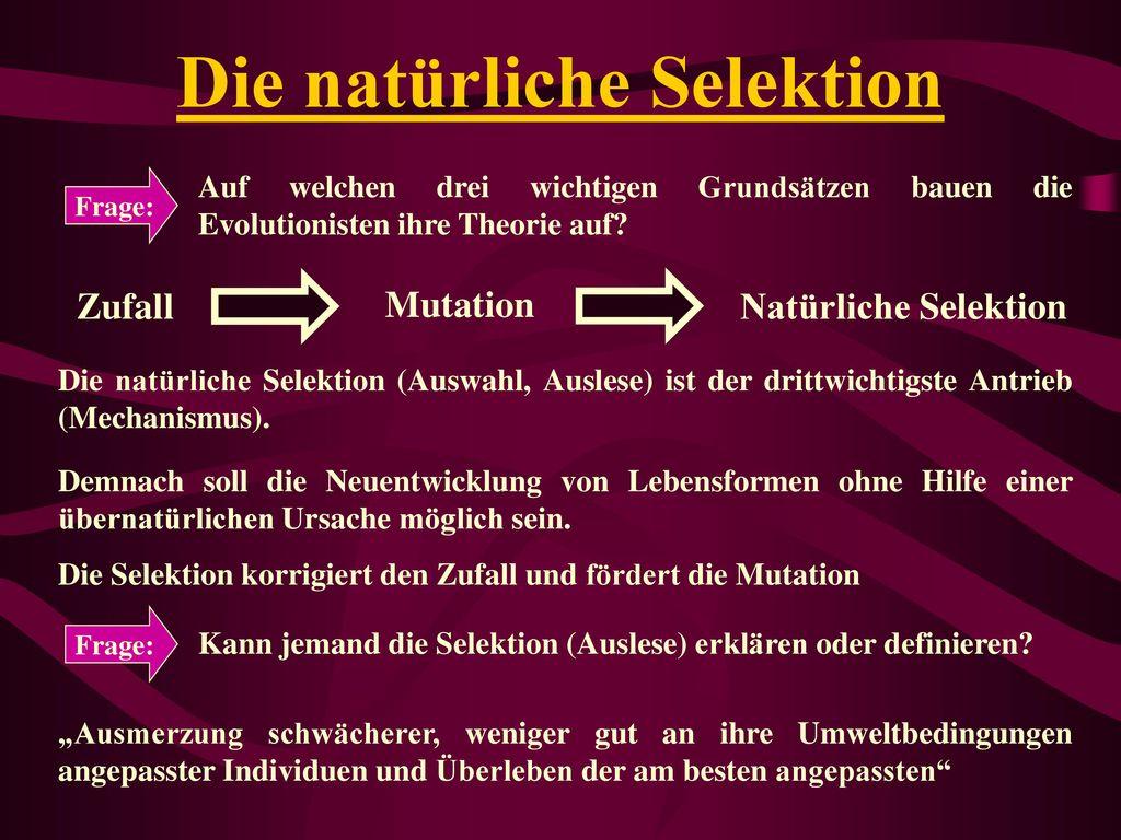 Die natürliche Selektion