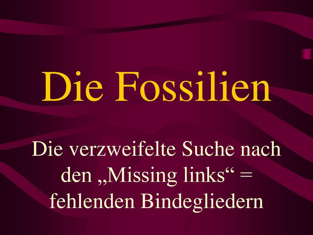 """Die Fossilien Die verzweifelte Suche nach den """"Missing links = fehlenden Bindegliedern"""