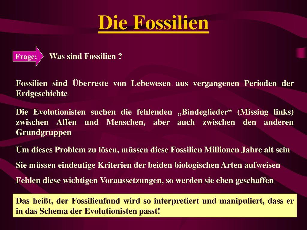 Die Fossilien Was sind Fossilien