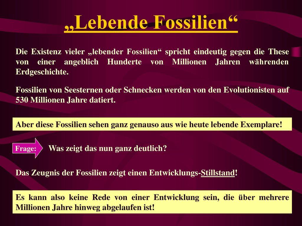 """""""Lebende Fossilien"""