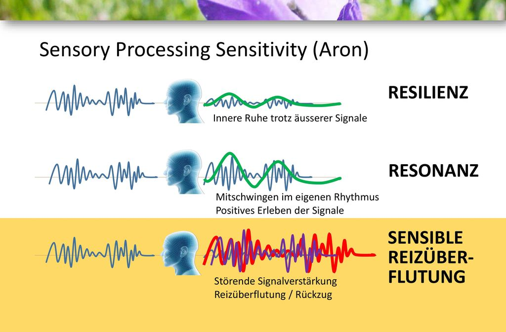 Sensory Processing Sensitivity (Aron)