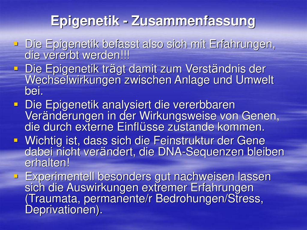 Epigenetik - Zusammenfassung