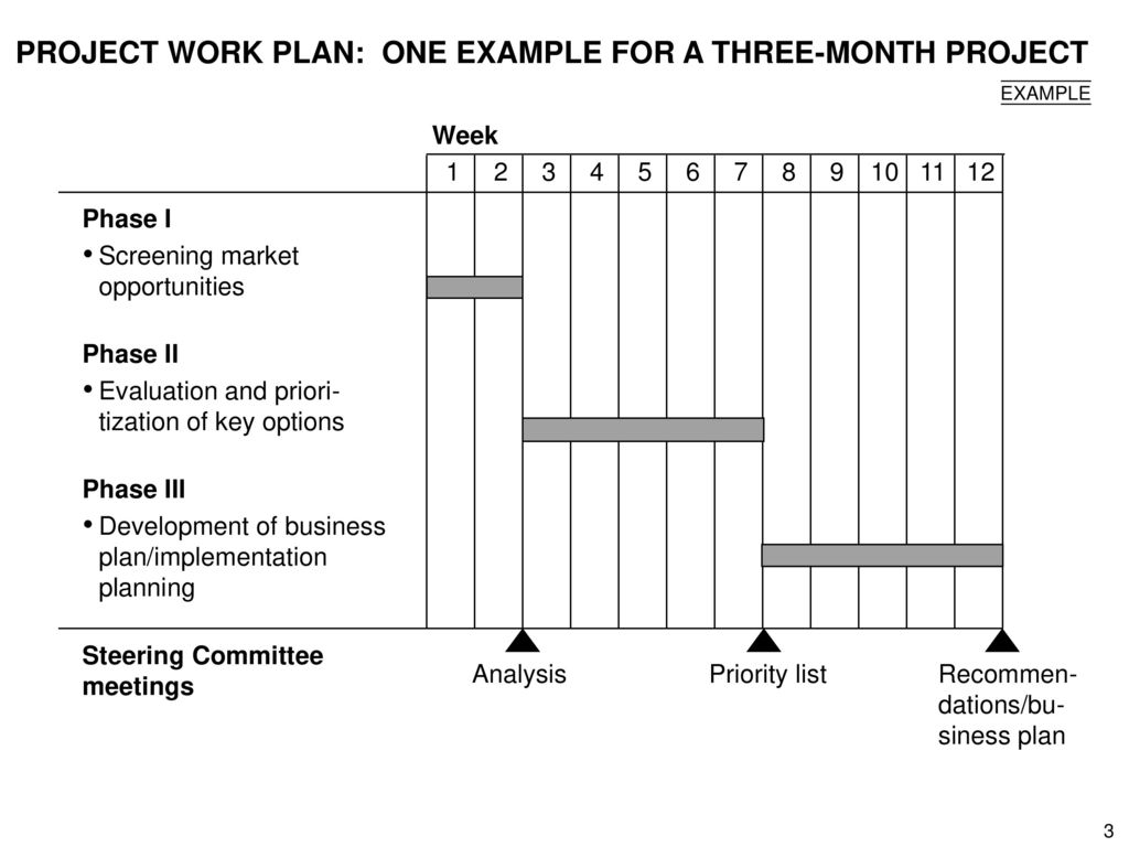 PROJECT WORK PLAN: ONE EXAMPLE FOR A THREE-MONTH PROJECT