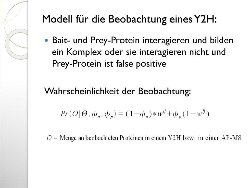 Modell für die Beobachtung eines Y2H: